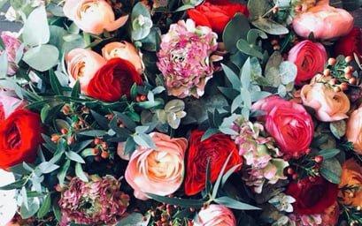 developpement durable, ecologie, fleuriste, concept original, magazine, fleurs de france