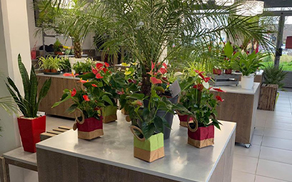 fleuriste, eco-responsable, label, ecologie